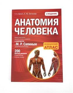 Атлас анатомии и физиологии человека, книга - фото 4748